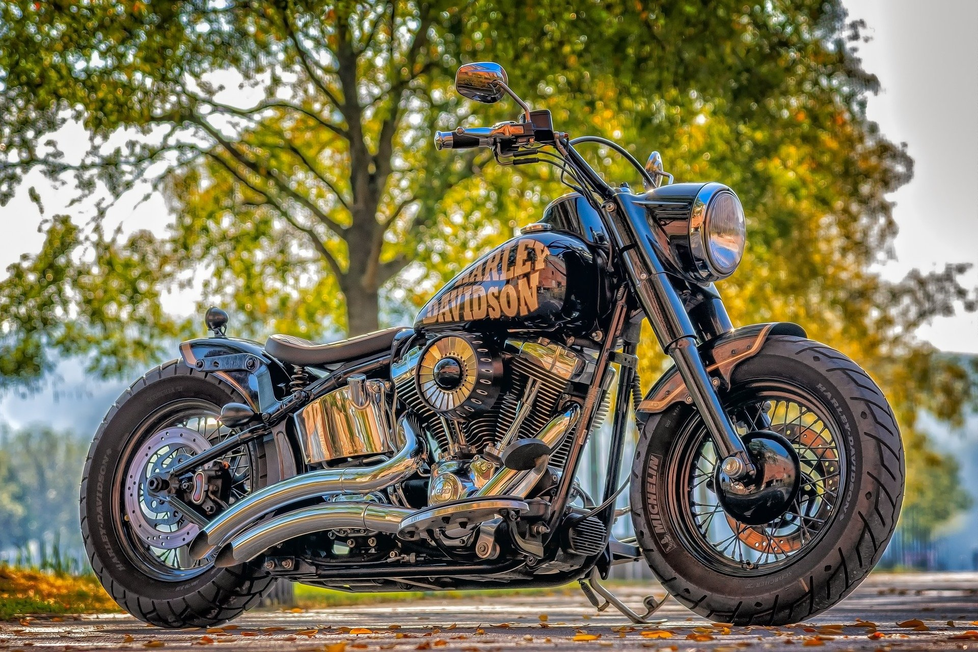 Harley Davidson leaving the country?